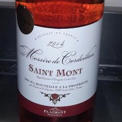 Saint mont